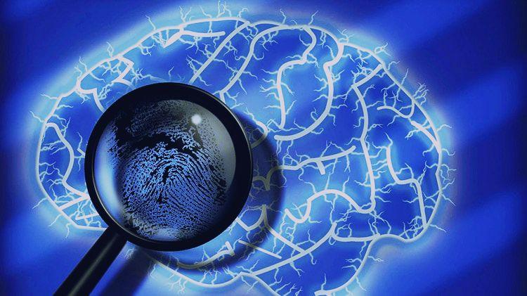 psicologia-forense